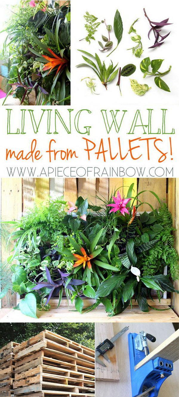 13 DIY Tropical Pallet Living Wall