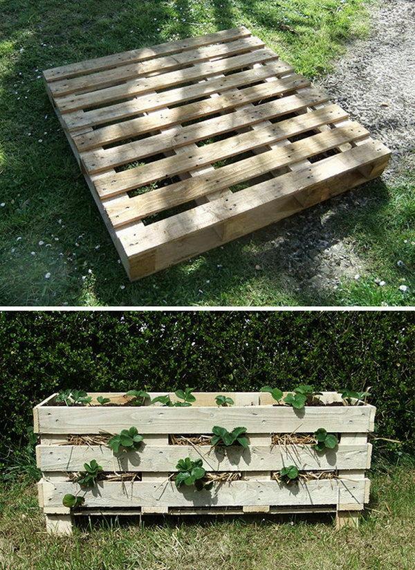 15 Strawberry Pallet Planter