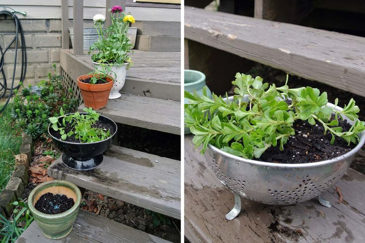 26 kitchenware-planters