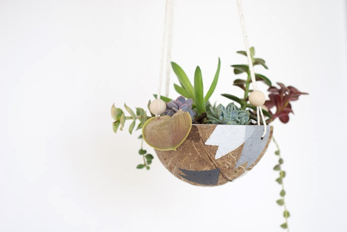 11 Coconut Hanging Planter