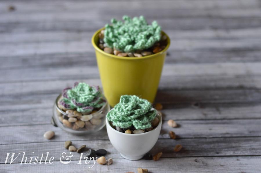17 Crochet These Adorable Succulents