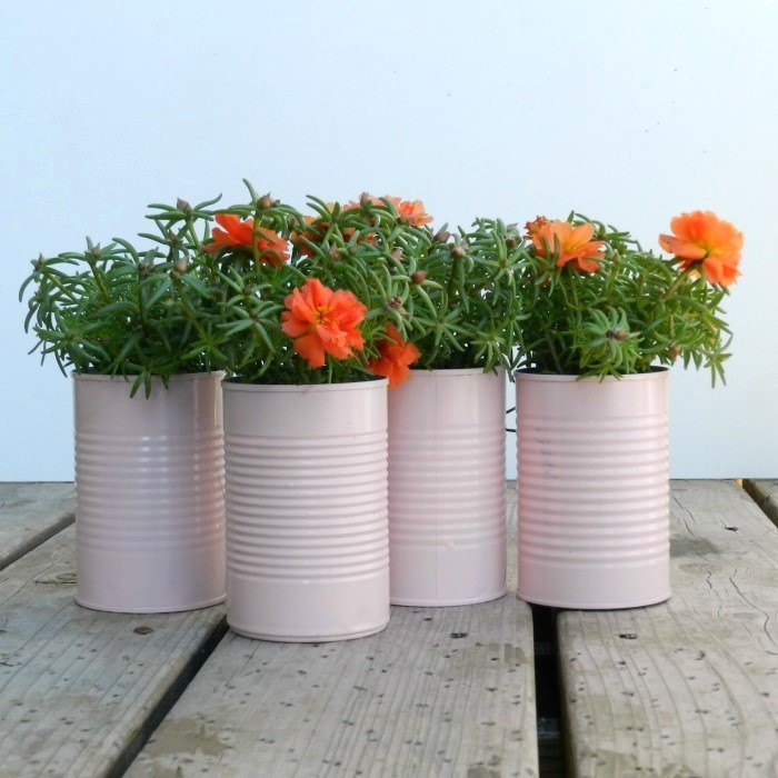 24 Tin Can Planters