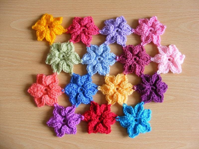8 Star Flowers