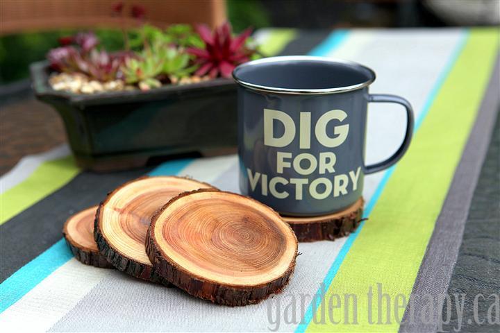 12 Natural Branch Coasters