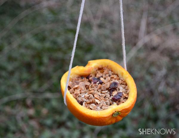 10 Orange Cup Bird Feeder
