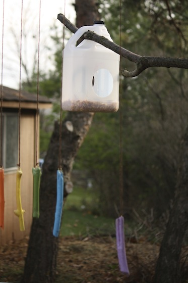 20 Simple Plastic Jug Bird Feeder