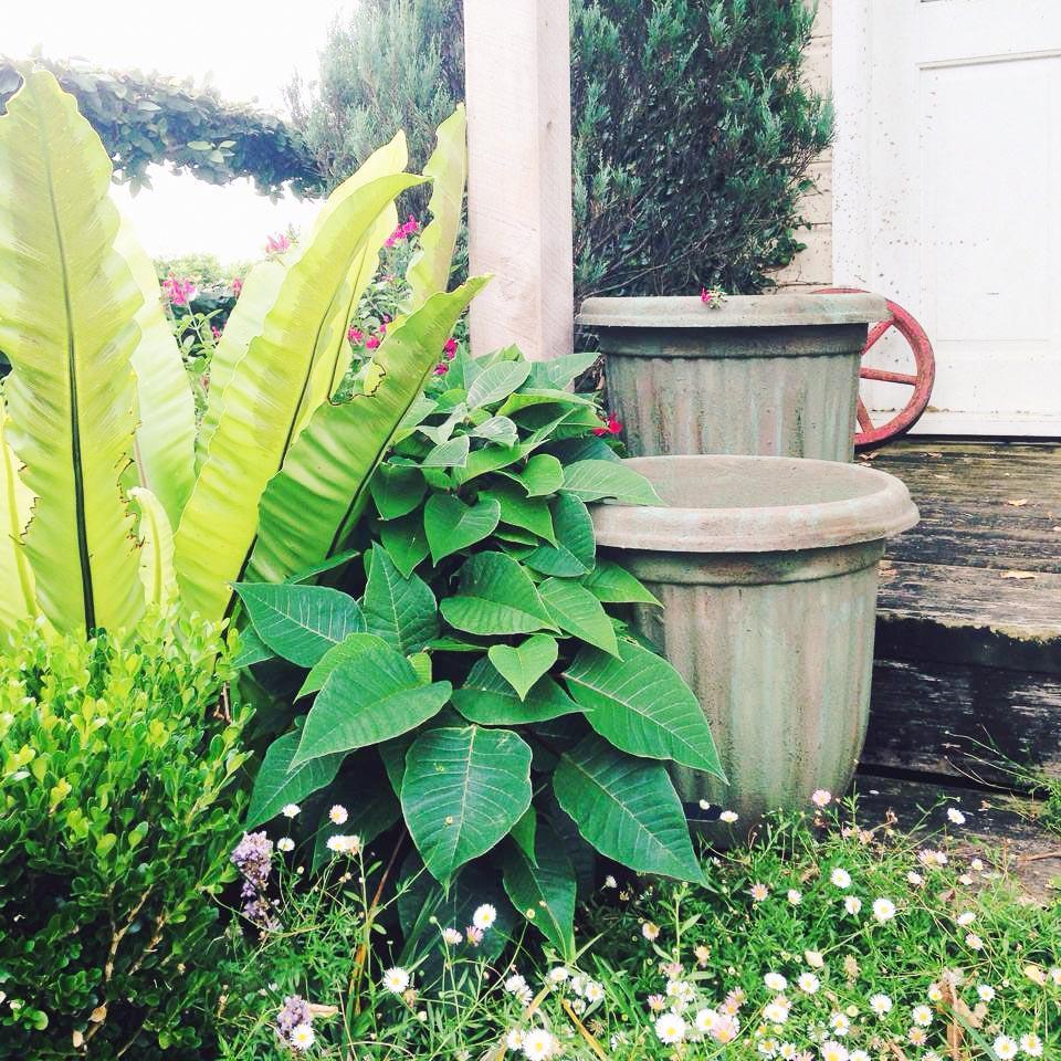 1 Antique your Plastic Pots