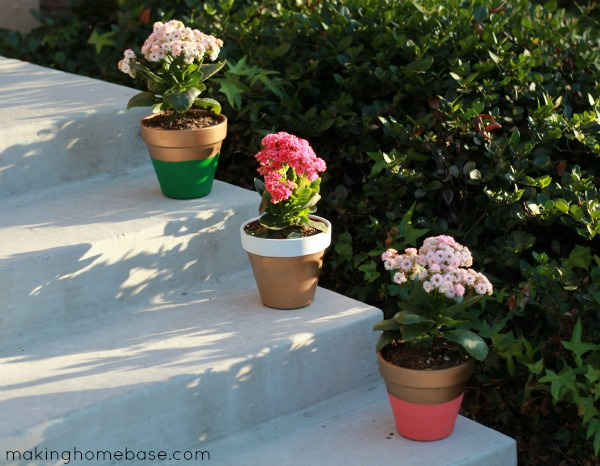 10 Paint Flower Pots with Different Colors