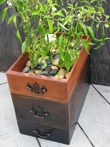 13 Self-Watering Planter