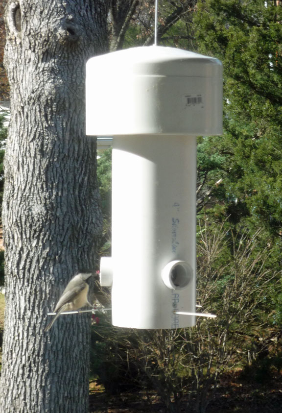 16 A squirrel-proof bird feeder