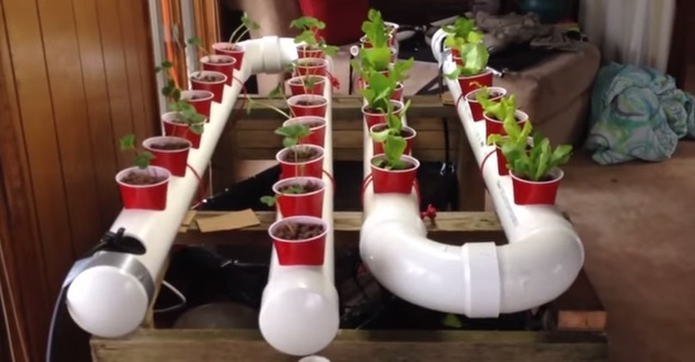 18 Build a Gravity-Based PVC Aquaponic Garden
