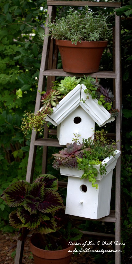 24 DIY Easy Green Roof Birdhouses