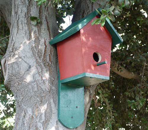 30 DIY Bluebird House
