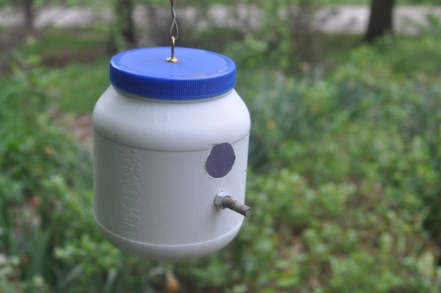 35 Peanut Butter Jar Birdhouse