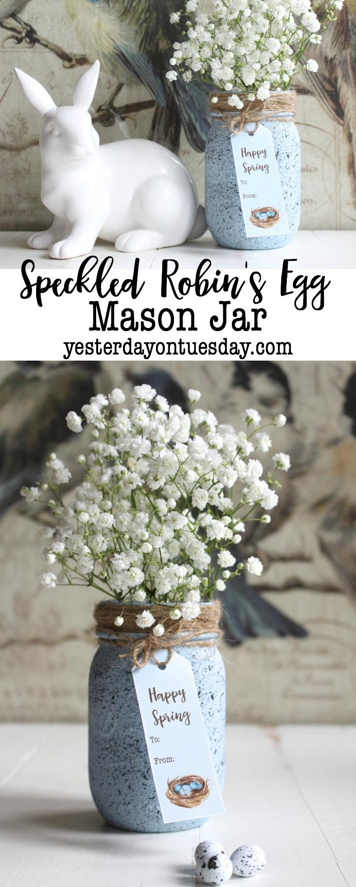 37 Speckled Robin's Egg Mason Jar