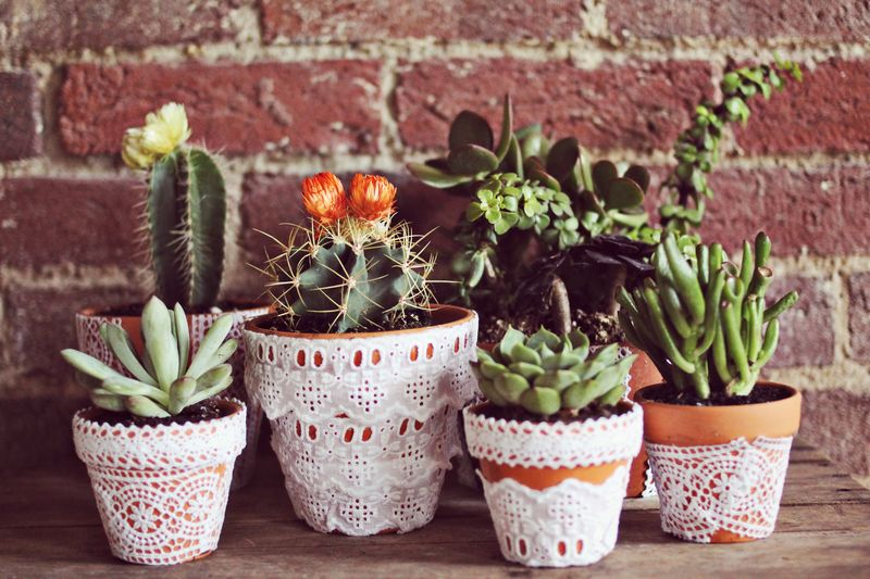 4 Cover Pots with Lace