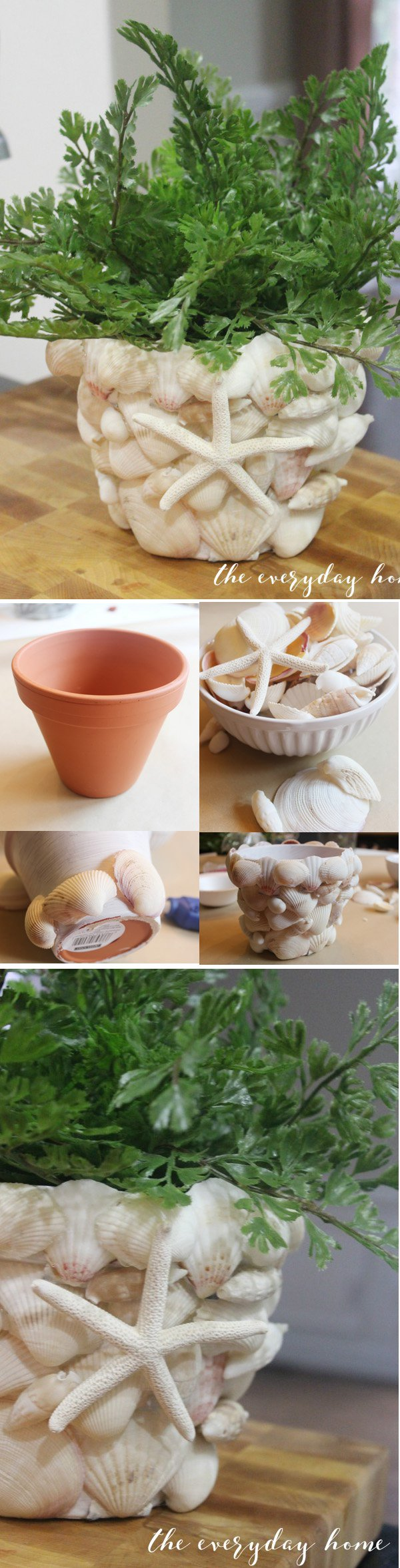 41 DIY Shell Covered Terra Cotta Pot