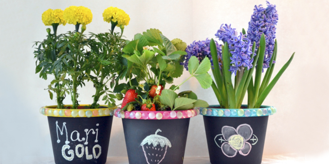 5 Make Your Own Chalkboard Flowerpots
