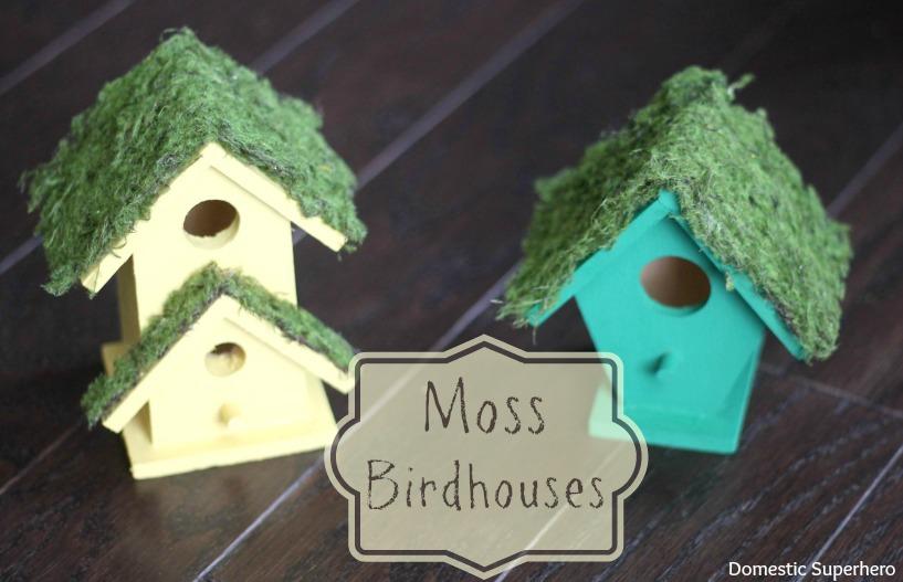 5 Moss Birdhouse