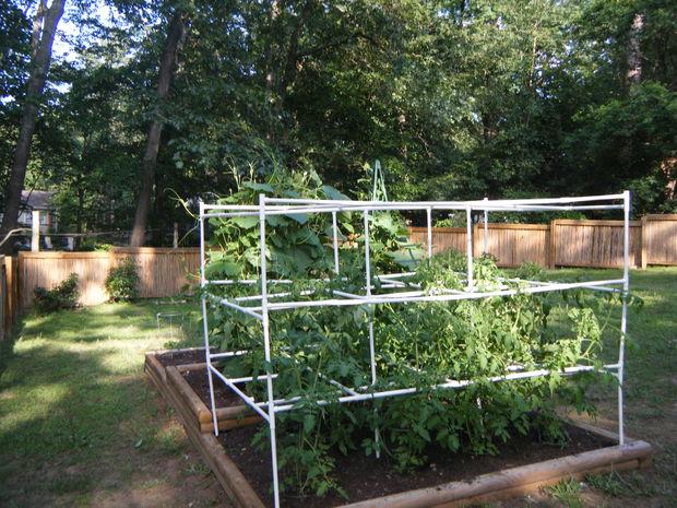 5 PVC Tomato Cages