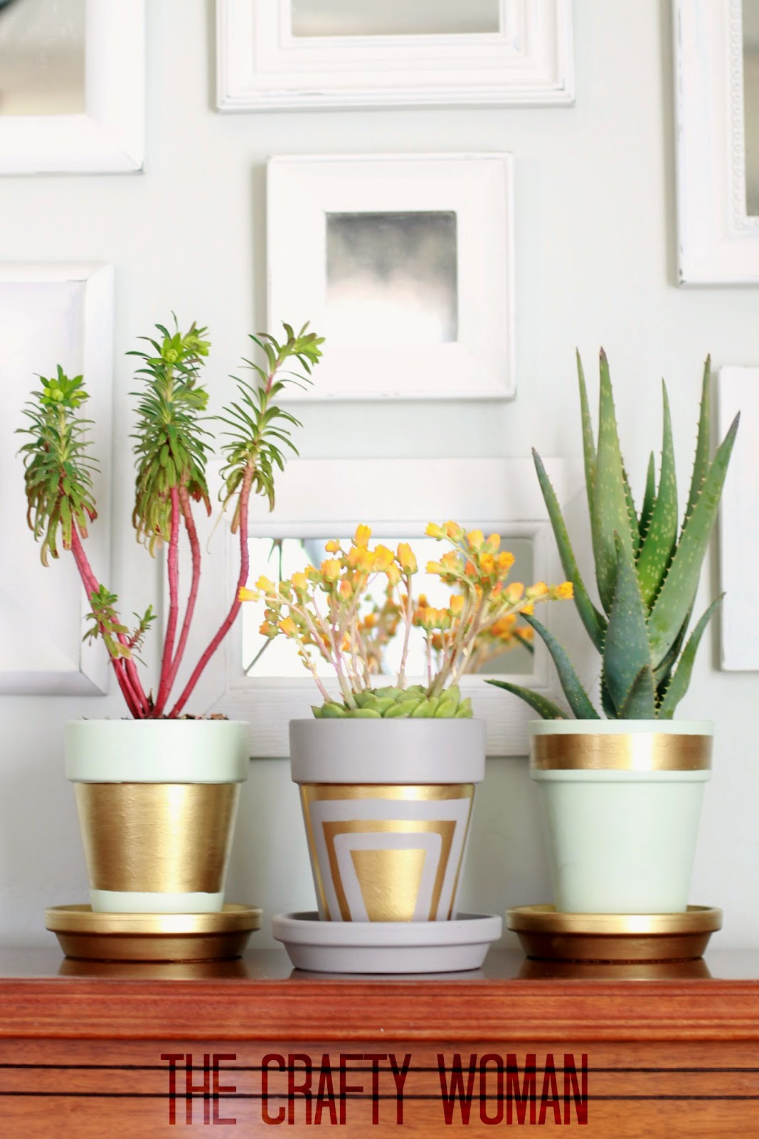 6 Pastel Painted Pots Lined with Golden Shapes