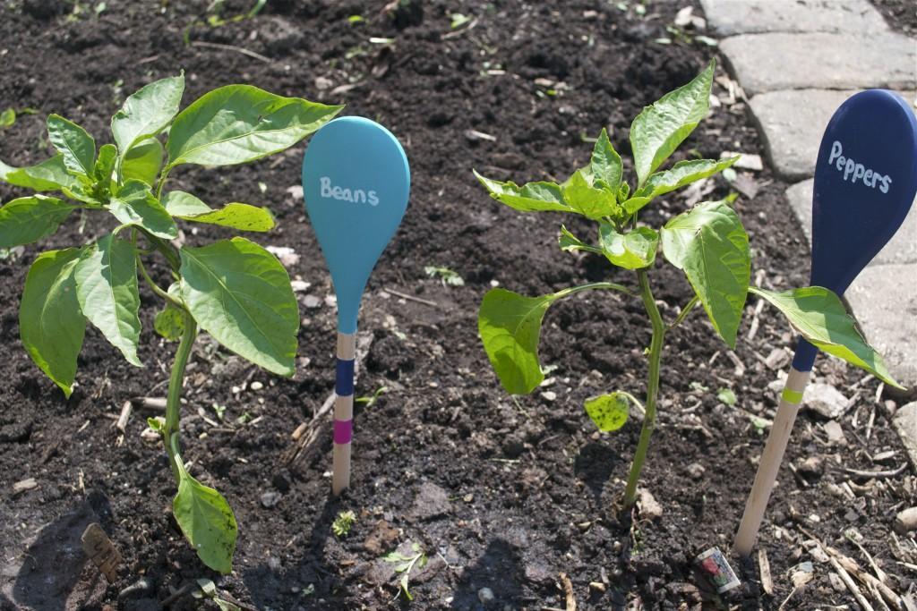 1 Wooden Spoon Garden Markers