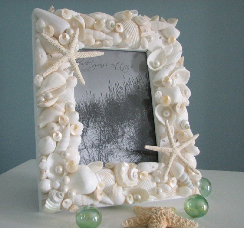 22 Seashell Embellished Frame