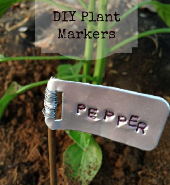 24 Rustic Plant Marker