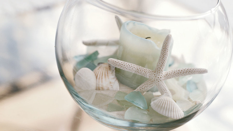 24 Seashell Centerpiece