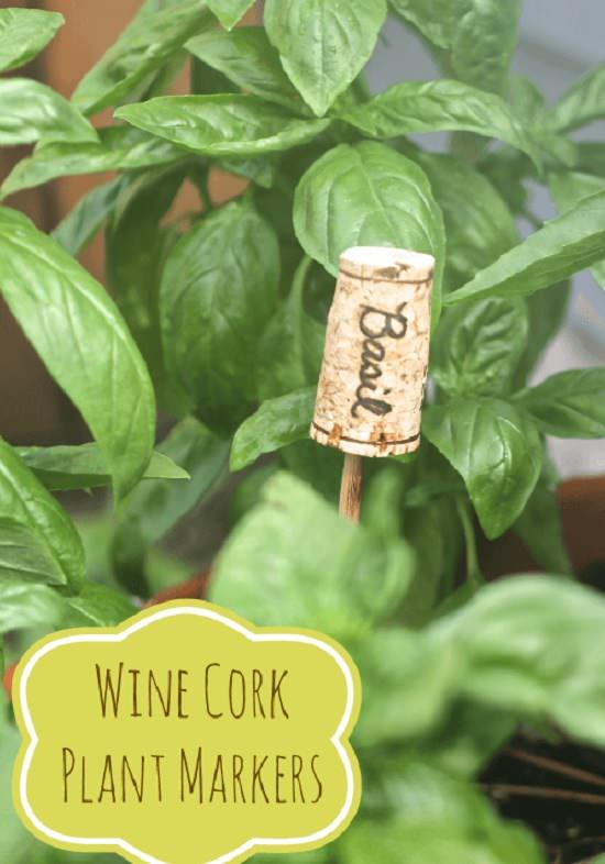 30 Wine Cork Plant Marker