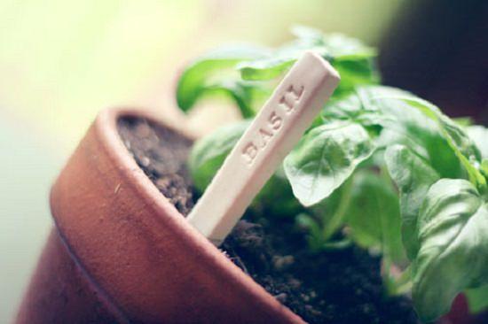 44 Cute Little Garden Marker