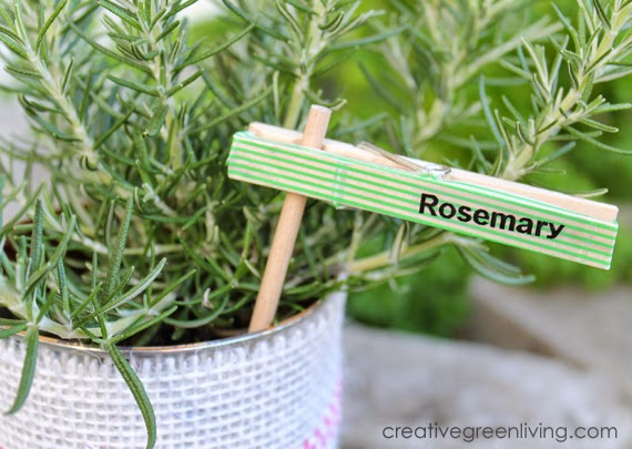 6 Make Plant Markers from Clothespins
