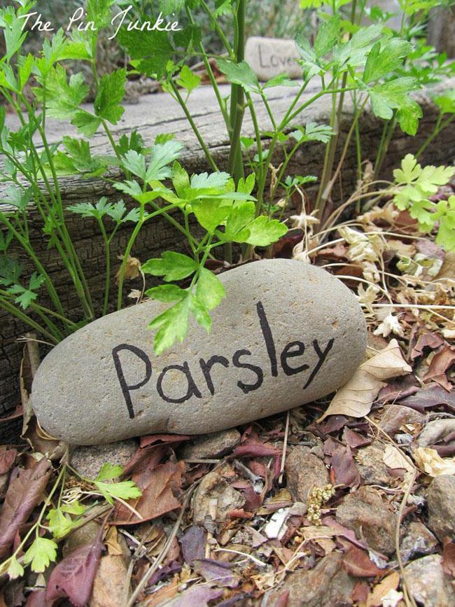 8 Rock Garden Markers