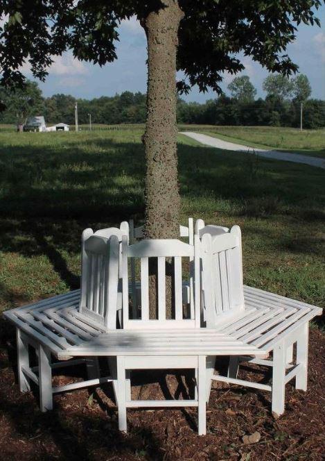 30 Tree Bench