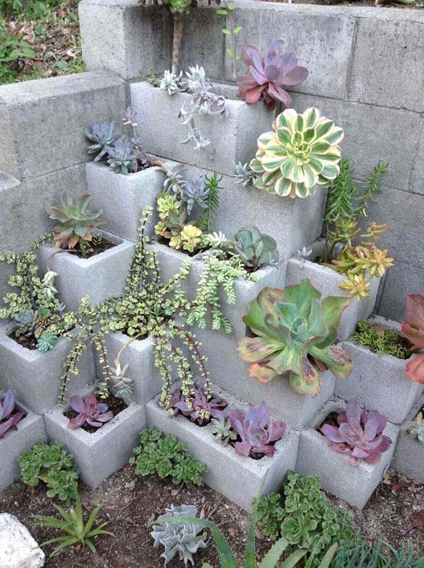 32 Cozy Corner Succulent Garden with Cinder Blocks