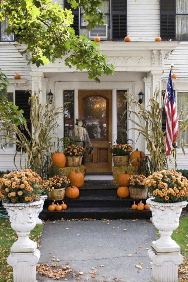 20 Pumpkins and Mums