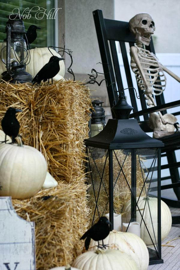 5 Front Porch Crows