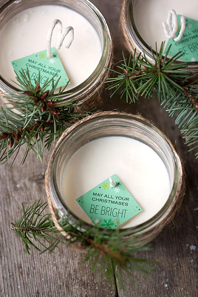 8 Pinecone Scented Soy Candles